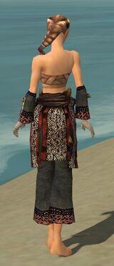 Monk Primeval Armor F gray arms legs back.jpg
