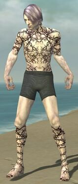 Necromancer Elite Scar Pattern Armor M gray chest feet front.jpg