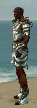Paragon Primeval Armor M gray side.jpg