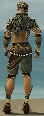 Ritualist Vabbian Armor M gray back.jpg