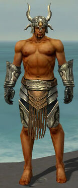 Warrior Elite Sunspear Armor M gray arms legs front.jpg