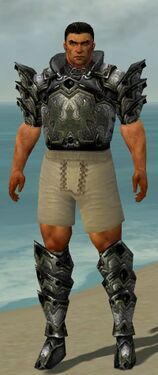 Warrior Obsidian Armor M gray chest feet front.jpg