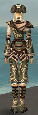 Monk Canthan Armor F gray back.jpg