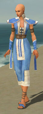 Monk Krytan Armor F dyed front.jpg