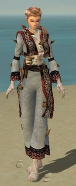 Monk Primeval Armor F dyed front.jpg