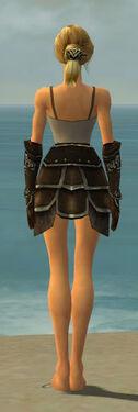 Warrior Shing Jea Armor F gray arms legs back.jpg