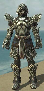 Warrior Silver Eagle Armor M gray front.jpg