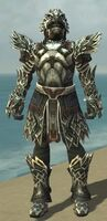Warrior Silver Eagle Armor M gray front.jpg