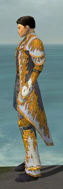 Elementalist Iceforged Armor M dyed side.jpg