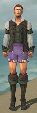 Mesmer Performer Armor M gray chest feet front.jpg