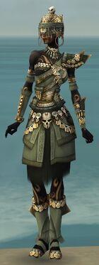 Ritualist Elite Imperial Armor F gray front.jpg