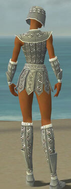 Warrior Ascalon Armor F gray back.jpg