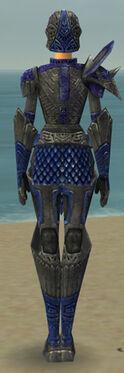 Warrior Elite Platemail Armor F dyed back.jpg