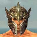 Warrior Monument Armor M gray head front.jpg