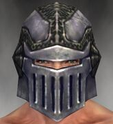 Warrior Platemail Armor M gray head front.jpg