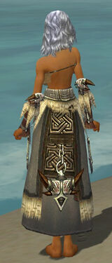 Dervish Norn Armor F gray arms legs back.jpg