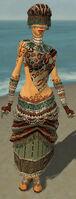 Ritualist Elite Exotic Armor F gray front.jpg