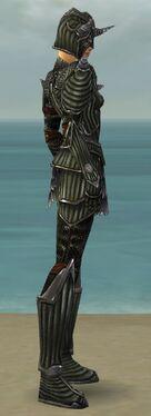 Warrior Wyvern Armor F gray side.jpg