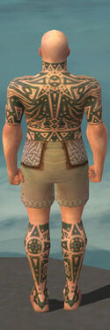 Monk Star Armor M gray chest feet back.jpg