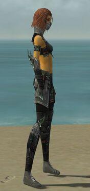 Assassin Luxon Armor F gray side.jpg