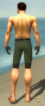Mesmer Elite Luxon Armor M gray arms legs back.jpg