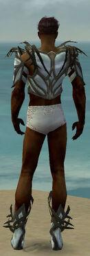 Paragon Primeval Armor M gray chest feet back.jpg