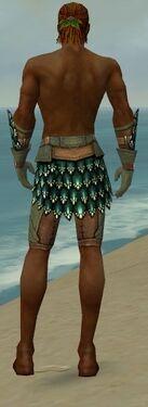 Ranger Drakescale Armor M gray arms legs back.jpg