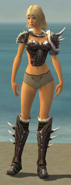 Warrior Norn Armor F gray chest feet front.jpg
