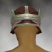 Crown M gray back.jpg