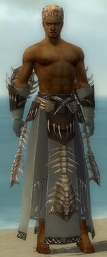 Dervish Primeval Armor M gray arms legs front.jpg