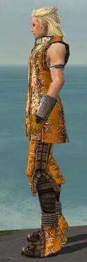 Elementalist Istani Armor M dyed side.jpg