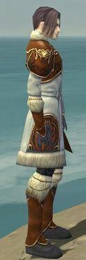 Elementalist Norn Armor M dyed side.jpg