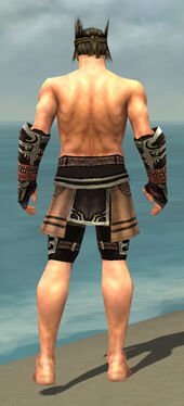 Warrior Ancient Armor M gray arms legs back.jpg
