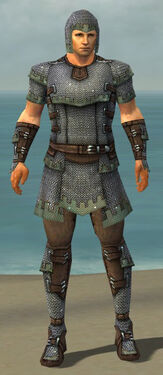 Warrior Tyrian Armor M gray front.jpg