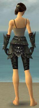 Warrior Wyvern Armor F gray arms legs back.jpg