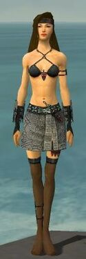 Assassin Canthan Armor F gray arms legs front.jpg