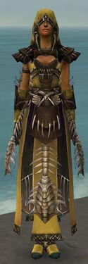 Dervish Primeval Armor F dyed front.jpg