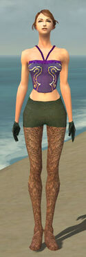 Mesmer Performer Armor F gray arms legs front.jpg