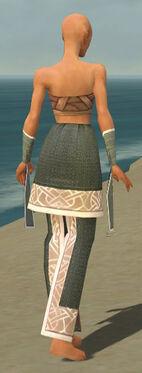 Monk Tyrian Armor F gray arms legs back.jpg