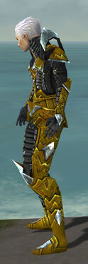 Necromancer Profane Armor M dyed side.jpg