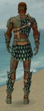 Ranger Drakescale Armor M gray back.jpg