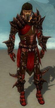 Ranger Primeval Armor M dyed front.jpg