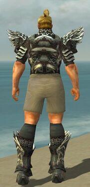 Warrior Silver Eagle Armor M gray chest feet back.jpg