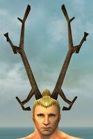 Horns of Grenth gray front.jpg