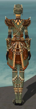 Ritualist Imperial Armor F gray back.jpg
