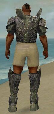 Warrior Elite Platemail Armor M gray chest feet back.jpg