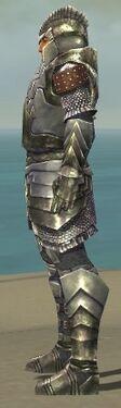 Warrior Templar Armor M gray side alternate.jpg