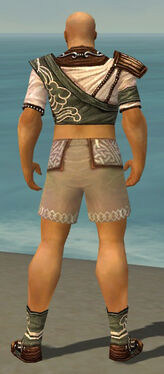 Monk Canthan Armor M gray chest feet back.jpg