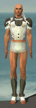 Paragon Elonian Armor M gray chest feet front.jpg