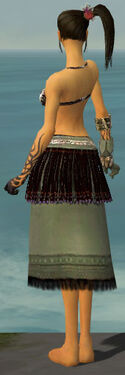 Ritualist Seitung Armor F gray arms legs back.jpg